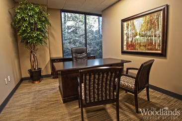 1095-evergreen-circle-the-woodlands-tx.jpg