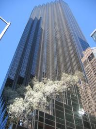 725-5th-avenue-new-york-ny-10022.jpg